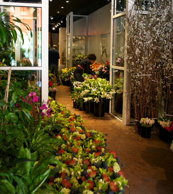 Washington DC Florist Allan Woods Shop